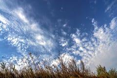 Nuvens de cirro no céu azul imagem de stock