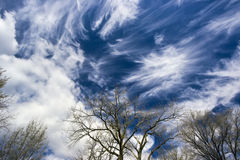 Nuvens de cirro surpreendentes Imagem de Stock Royalty Free