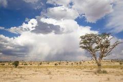 Nuvens de Kalahari foto de stock