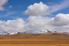 Nuvens de tempestade da neve de China Tibet Imagem de Stock