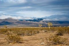 Nuvens de tempestade sobre o deserto do Arizona Foto de Stock Royalty Free