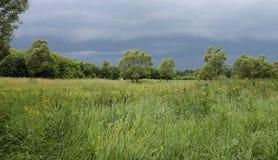 Nuvens de tempestade sobre o prado Imagem de Stock