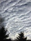 Nuvens do algodão Foto de Stock