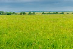 nuvens do campo da grama verde na primavera e de chuva pesada imagem de stock royalty free