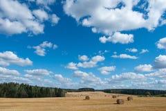 Nuvens do campo do feno imagem de stock