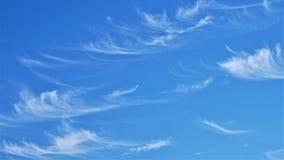 Nuvens do horsetail de Whispy imagem de stock royalty free