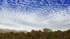 Nuvens do lapso de tempo sobre a floresta do outono vídeos de arquivo