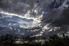 Nuvens do verão Imagens de Stock