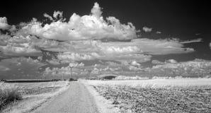 Nuvens do verão sobre campos fotografia de stock royalty free