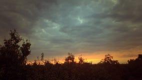 Nuvens do voo no por do sol vídeos de arquivo