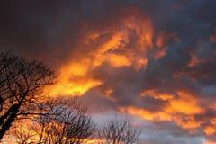 Nuvens douradas Fotografia de Stock Royalty Free