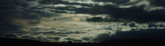 Nuvens dramáticas acima da floresta fotos de stock