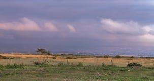 Nuvens dramáticas do por do sol sobre campos de cultivo em Anglesey vídeos de arquivo