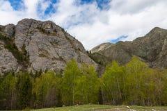 Nuvens dram?ticas no c?u sobre o estepe e as florestas nas montanhas de Altai, R?ssia imagem de stock royalty free