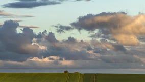 Nuvens dramáticas sobre campos do verde do verão vídeos de arquivo