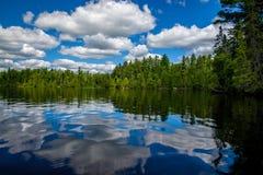 Nuvens e floresta refletindo, lago do sawbill, bwcaw Fotografia de Stock