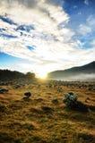 Nuvens e nascer do sol e vistas bonitas do céu azul imagem de stock
