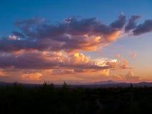 Nuvens e por do sol ou nascer do sol com cacto da silhueta Imagem de Stock Royalty Free