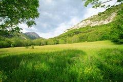 Nuvens e prado verde Fotos de Stock Royalty Free