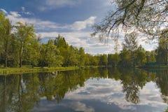 Nuvens e reflexão das árvores na lagoa Fotos de Stock Royalty Free