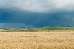 Nuvens escuras da tempestade sobre o campo Fotos de Stock