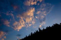 Nuvens no céu com floresta Imagens de Stock Royalty Free