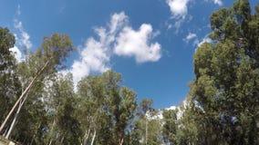 Nuvens que movem-se - lapso de tempo filme