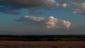 Nuvens que movem-se sobre o campo amarelo vídeos de arquivo