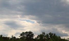 Nuvens sobre as árvores imagens de stock royalty free