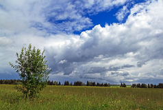 Nuvens sobre o campo Fotos de Stock