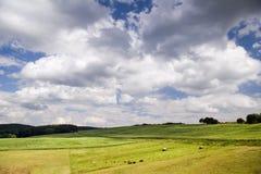 Nuvens sobre o campo da agricultura Imagem de Stock