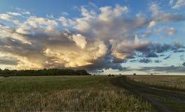 Nuvens sobre o feno do prado Fotografia de Stock Royalty Free