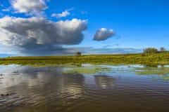 Nuvens sobre o lago Fotografia de Stock Royalty Free