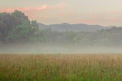 Nuvens sobre um prado em Smokey Mountains Bathed na tarde Sun Fotografia de Stock Royalty Free