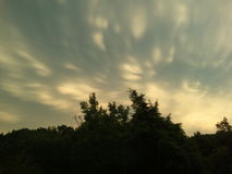 Nuvens ventosas sobre a floresta imagem de stock royalty free