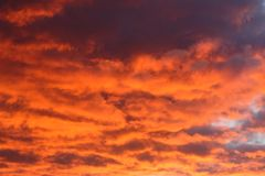 Nuvens vermelhas Imagem de Stock