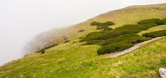 Nuvola che copre scogliera verde Immagine Stock