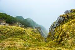 Nuvola che copre scogliera verde all'elevata altitudine Fotografia Stock Libera da Diritti