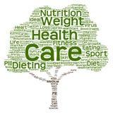 Nuvola concettuale di parola dell'albero di dieta o di salute Immagine Stock