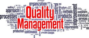 Nuvola dell'etichetta della gestione della qualità Fotografia Stock