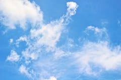 Nuvola dell'uccello e del cielo blu Immagini Stock
