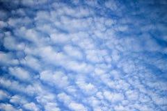 Nuvola di Altocumulus Fotografie Stock
