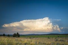 Nuvola di tempesta del cumulo sopra il landscapde del deserto fotografia stock libera da diritti