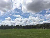Nuvola e campo Immagini Stock