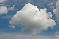 Nuvola lanuginosa Fotografia Stock