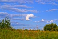 Nuvola sotto forma di pesce Fotografie Stock Libere da Diritti