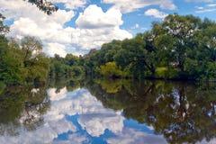 Nuvole che riflettono parco nel fiume di Bobr, paesaggio della valle di Bobr, Polonia Immagini Stock