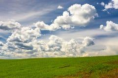 Nuvole in cielo blu sopra i raccolti verdi Fotografia Stock Libera da Diritti