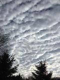 Nuvole del cotone Fotografia Stock