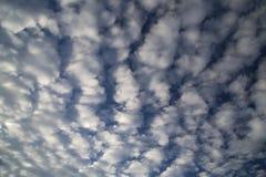Nuvole di Altocumulus Fotografia Stock Libera da Diritti
